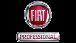 Fiat Professionnel garage